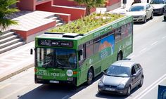 Growing on top? Buses' roof gardens are designed to bring a breath of fresh air from the countryside to Spain's choked cities