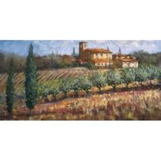 Tuscan Olives Canvas Art - Malcolm Surridge (24 x 48)