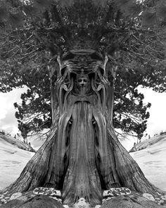 Sacred tree sculpture
