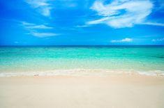 Soft wave on sandy beach. Beach Background, Blurred Background, Vector Background, Ocean Backgrounds, Coconut Palm Tree, Photoshop, Soft Waves, I Wallpaper, Beach Themes
