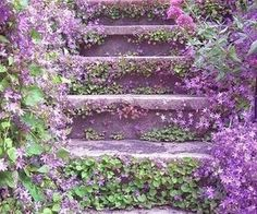 Lilac stairway | Spring...