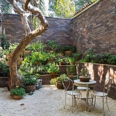 Elkis paisagismo back yard bungalow landscaping, garden и pa Deck With Pergola, Pergola Shade, Diy Pergola, Pergola Ideas, Bungalow Landscaping, Backyard Landscaping, Small Gardens, Outdoor Gardens, Summer Front Porches