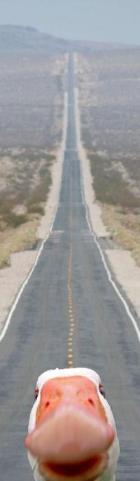 La strada è lunga xD