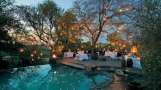 Wow The 10 Most Amazing South Africa Safari Lodges Offering Thrilling Experiences