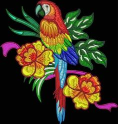 STUNNING-PARROTS-10-MACHINE-EMBROIDERY-DESIGNS-3-SIZES