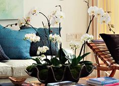 1000 images about mesas deco on pinterest mesas ideas for Orquideas artificiales