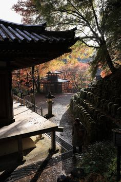 "There's more than yoga in my novel ""Ashram"" as the resident students perceive ancient wisdom in related traditions. Consider Kyoto, Japan."