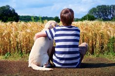 Becoming The Best Pet Parent: Tips for Responsible Dog Ownership