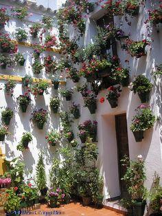 La casa de los Martínez: Jardines verticales y patios cordobeses [Vertical gardens and patios of Córdoba]