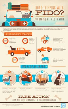 Summer Road Trips: Tips for a Safer Trip with Pets #Infographic