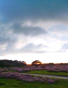 Tafelberg, Blaricum, Noord-Holland.