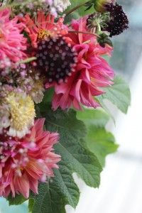 It's so hard to believe we have arrived at Week but the flowers tell us it is so. Much is blooming early here in the Pacific Northwest. The flower farmers report that their crops are expl… Flower Farmer, Dahlia, Design Projects, Floral Design, Bloom, Challenges, Flowers, Plants, Floral Patterns