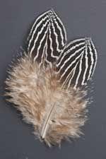 Andersen's Pheasant Feathers   Atlantic Salmon Fly Tying Materials   Classic Salmon Fly Tying Materials Feather Crafts, Feather Art, Blue Feather, Feather Design, Fly Tying Tools, Fly Tying Materials, Pheasant Feathers, Bird Feathers, Fly Fishing Equipment