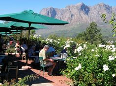 Hillcrest Berry Orchards in the Winelands Cape Town South Africa, Next Door, Far Away, Terrace, Scenery, Places To Visit, Country, World, Crumpets