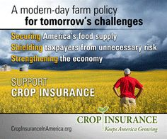 "Cuts to the crop insurance program are included in President Barack Obama's proposed fiscal 2017 budget, released today. According to the text of the budget proposal. ""These include reducing the farmers' subsidy by 10 percentage points for harvest price revenue coverage and reforming coverage for prevented planting."""