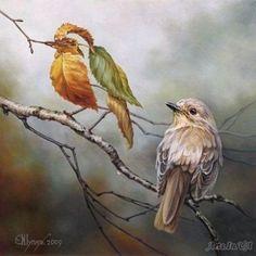 Het lijkt of er twee vogels zitten, maar de ene is gewoon een blaadje, dat is de optische illusie.