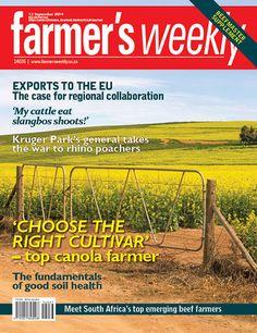 12 September: Top canola farmer helps us choose the right cultivars.