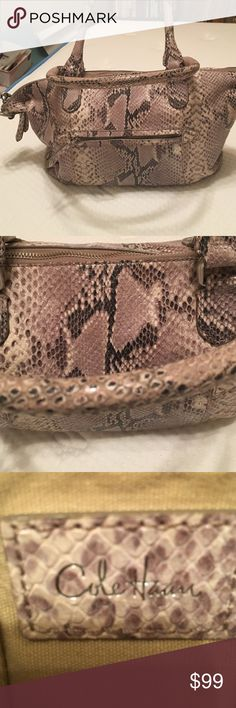 Snakeskin Cole Haan bag Great bag, perfect size, some wear on inside, however in great condition Cole Haan Bags Totes