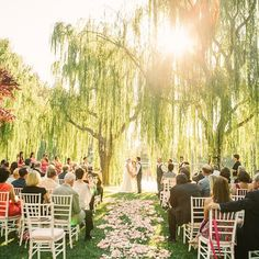 {via @theedgeswed Instagram} - simples cerimonia a beira de um lago, com lindas arvores e apenas petalas ao longo do corredor    Alaina & Brent surrounded by willows