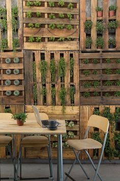 Vertical garden pallet wall / Renovation: Heroe Kids Building  / Arsciniest Group