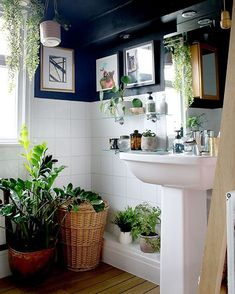 6 Decorating Rules You Can Totally Break - Swoon Worthy - black and white bathroom with boho accessories - Zen Bathroom, Bathroom Plants, White Bathroom, Modern Bathroom, Small Bathroom, Family Bathroom, Neutral Bathroom, Bathroom Ideas, Blue Bathroom Decor