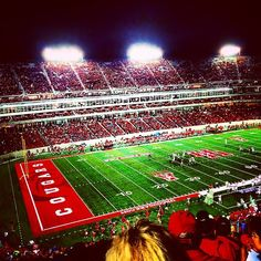 houston cougars football fans - Google Search