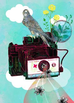 Vintage Polaroid Land Camera | Flickr - Photo Sharing!