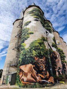 Australian Silo Art Trail Grafitti Street, Murals Street Art, 3d Street Art, Mural Art, Australian Animals, Australian Art, Farm Art, Art Addiction, Building Art