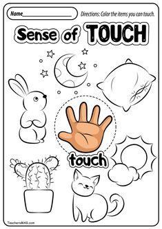 Free Five Senses Worksheets Preschool Activity Sheets, Five Senses Preschool, 5 Senses Activities, My Five Senses, Preschool Learning Activities, Kindergarten Science, Preschool Printables, Preschool Lessons, Kindergarten Worksheets