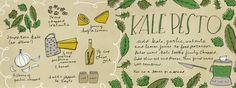 Kale Pesto by Katie Vaz - They Draw & Cook
