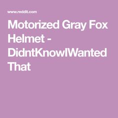 Motorized Gray Fox Helmet - DidntKnowIWantedThat