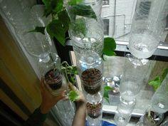makkelijke tips voor een groententuinen: http://www.hetkanwel.net/praktische-tips/groei-je-eigen-groenten-met-of-zonder-vieze-handen/ Slim ontwerpen: welke planten zet je bij elkaar, zelf onderhoudende tuin