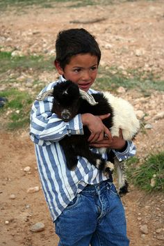 Baby goat and boy . Baby Goats, Moroccan Style, Animals For Kids, Little People, Cute Kids, Best Friends, Pets, Children, Toddlers