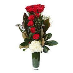 Rosas alto estilo