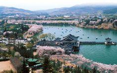 Gyeongju-city,  Korea