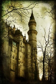 Dusk, Neuschwanstein Castle, Germany    photo via childofdanu  Lets Go Castles Amazing discounts - up to 80% off Compare prices on 100's of Hotel-Flight Bookings sites at once Multicityworldtravel.com