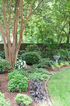 Perfectly Manicured Summer Garden Tour