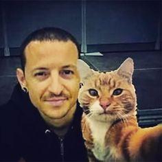#chesterbennington #cat #selfie