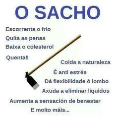 O sacho Decir No, Lol, Funny, Jokers, Summary, Celtic, Flexibility, Sentences, Sayings