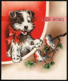 Vintage Christmas Greeting Card - Cute Terrier looks like my Scruffy. 1950s Christmas, Vintage Christmas Images, Christmas Puppy, Antique Christmas, Christmas Animals, Christmas Love, Vintage Holiday, Christmas Pictures, Vintage Images