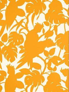 Florence Broadhurst Cockatoos Wallpaper.  For kitchen bar back.