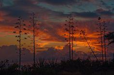 sunset picture desktop, 2048x1361 (342 kB)
