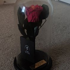 Beauty and the beast rose (Romantic red) — valentines day gift for her, valentines day gift, forever live rose, enchanted rose, love gift Beauty and the beast rose Romantic red valentines day gift Christmas Gifts For Wife, Valentines Day Gifts For Her, Pink Christmas, Christmas Couple, Love Gifts, Gifts For Mom, Lesbian Gifts, Valentine's Day Gift Baskets, Enchanted Rose