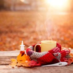 Fall Weather and Mold Illness Issues Mold Exposure, Fall Weather, Seasons, Seasons Of The Year