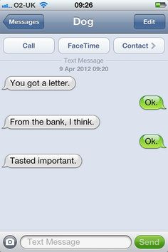 What If Dogs Could Text? 25 Hilarious Texts From Dogs