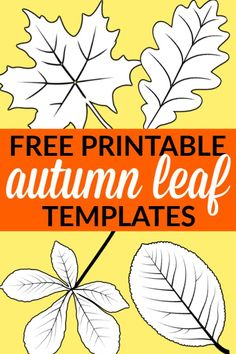 Free Printable Large Leaf Templates, Stencils and Patterns - Simple Mom Project Click and print any of these leaf templates, stencils and pattern outlines. They are absolutely perfect for a fall or nature-themed craft! Leaves Template Free Printable, Maple Leaf Template, Leaf Printables, Free Printables, Leaf Coloring Page, Easy Coloring Pages, Autumn Leaves Craft, Autumn Crafts, Cricut