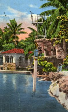 Dive into the Venetian Pool in Coral Gables. | Florida Memory