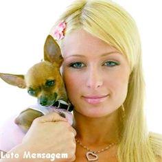 Paris Hilton Sente a Morte de Cachorrinha http://lutomensagem.blogspot.com.br/2015/04/paris-hilton-sente-morte-de-cachorrinha.html Famosa, polêmica e socialite americana, Paris Hilton sente a morte de sua cachorrinha Thinkerbell (sininho, em português).