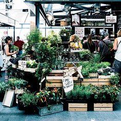 Europe's Best New Food Markets: Torvehallerne; Copenhagen
