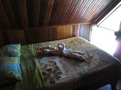 Monteverde Backpackers (C̶$̶6̶3̶) C$31 - UPDATED Prices, Reviews & Photos (Costa Rica - Santa Elena) - Hostel - TripAdvisor Monteverde, Costa Rica, All Flights, Puntarenas, Bungee Jumping, We The Best, Forest Park, Great Night, Travel Alone